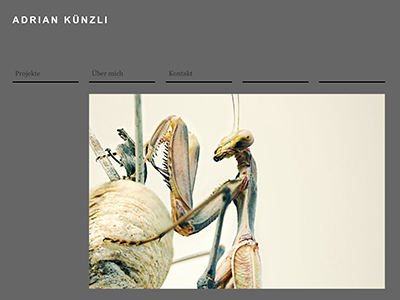 Adrian Künzli tablet view